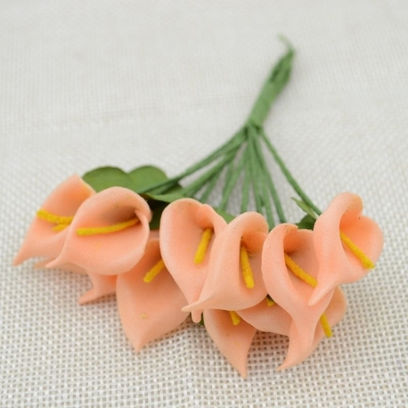 Foam Calla Lilies - Peach (Bunch of 12)