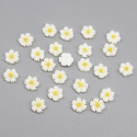 Mini Resin Daisies (50pcs)