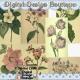 Download - Wildflower Vintage Images 2