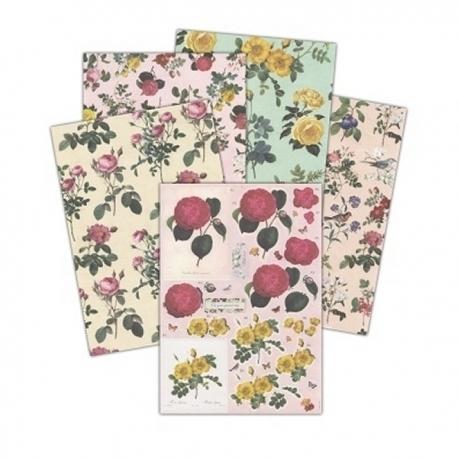 Botanicals Decoupage & A4 Paper set offer