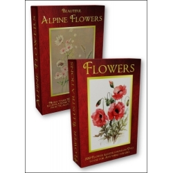 DVD - Flower Illustrations with FREE Beautiful Alpine Flowers DVD