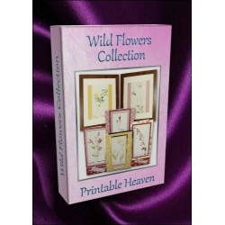 DVD - Wild Flowers Collection