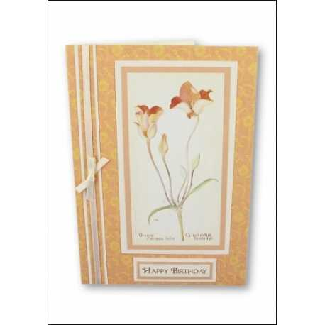 Download - Set - Wild Flowers Motifs 2