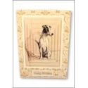 Download - Set - A Dozen Dogs or So - Pyramage