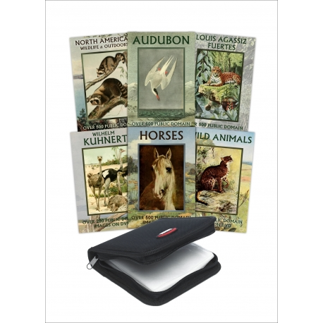 Public Domain 6 DVD Collection - Animals & Wildlife