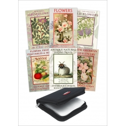 Public Domain 6 DVD Collection - Flowers & Nature