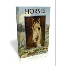 Public Domain Image DVD - Horses