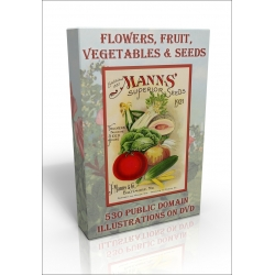 Public Domain Image DVD - Flowers, Fruit, Vegetables & Seeds