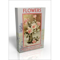 Public Domain Image DVD - Flower Illustrations