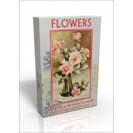 Public Domain Image DVD - Flower Illustrations