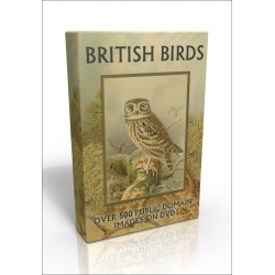 Public Domain Image DVD - British Birds