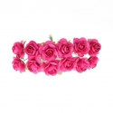 Paper Roses - Cerise (Bunch of 12)