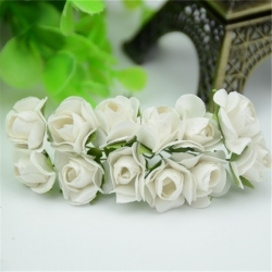 Paper Roses - Cream (Bunch of 12)