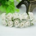 Paper Roses - Cream (Bunch of 12)