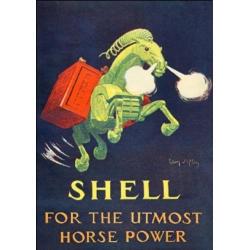 Download - Postcard - Shell