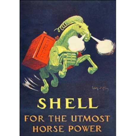 Download - Postcard - Shell
