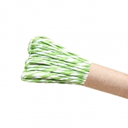 10m Striped Twine - Green
