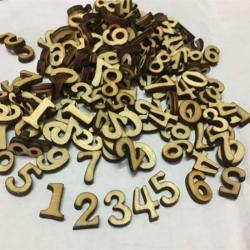 Rustic Wood Numbers (100pcs)