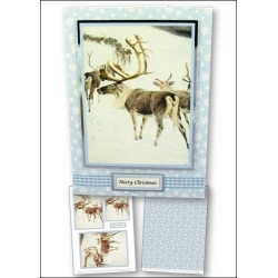 Download - Card Kit - Reindeer Procession