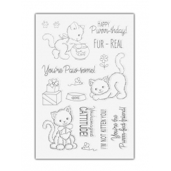 Clear Stamp set - Purr-fect Birthday