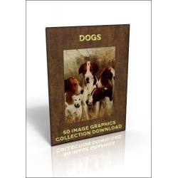 Download - 50 Image Graphics Collection - Dogs