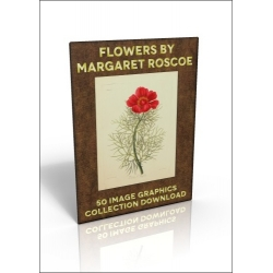 Download - 50 Image Graphics Collection - Flowers by Margaret Roscoe