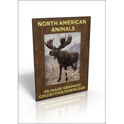 Download - 50 Image Graphics Collection - North American Animals