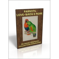 Download - 50 Image Graphics Collection - Parrots, Love-birds &