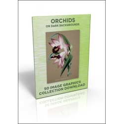 Download - 50 Image Graphics Collection - Orchids (on dark backgrounds)