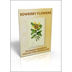 Download - 50 Image Graphics Collection - Sowerby Flowers