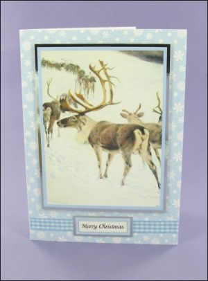 Reindeer Procession Christmas card