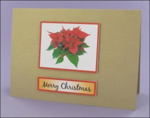 Poinsettia Photo Motif Card