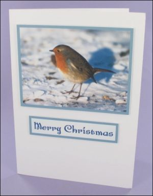 Large Robin Photo Motif Card
