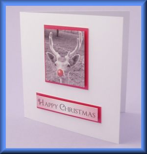 Reindeer photo motif card