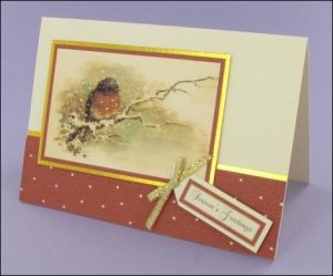Robin in Winter Card