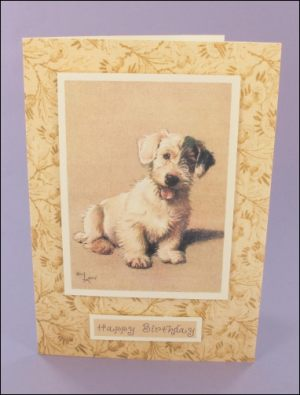 Barry Birthday Card