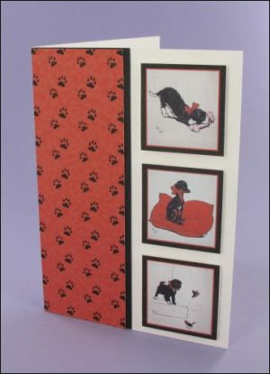 Three Black Puppies card