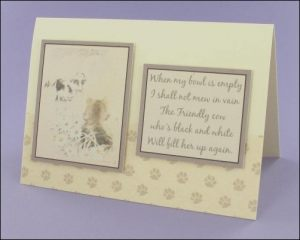 Daisy & Kitty card