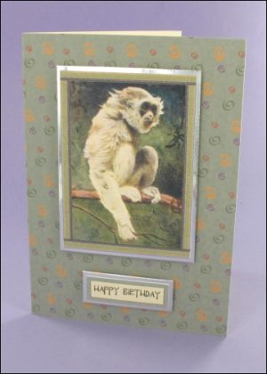Little Gibbon card