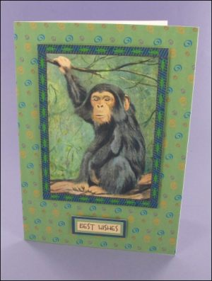 Chimpanzee card