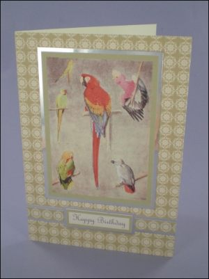 Lovely Parrots card