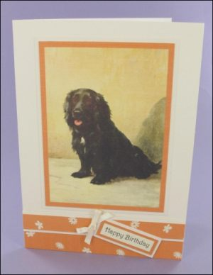 Chris Dog card