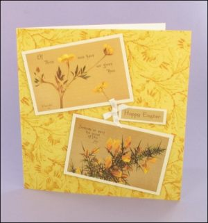 Sentiments Yellow Easter card