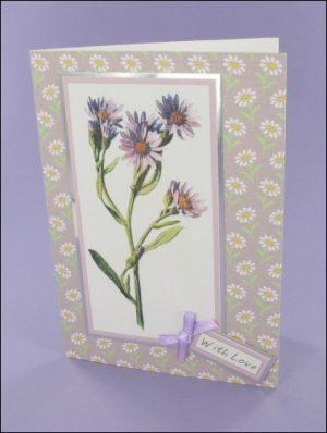 Lilac Michaelmas Daisy card