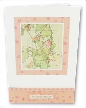 Watercolour Cotton Plant Pyramage card