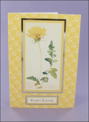 Cut-leafed Balsam Root Easter card