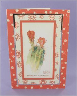 Hedgehog Cactus card