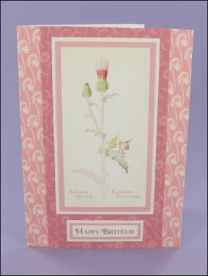 Arizona Thistle Birthday card