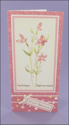 Canchalagua Birthday card