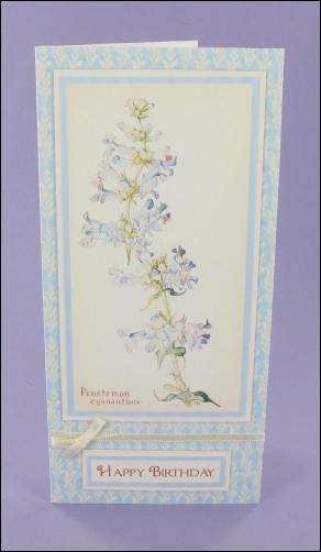 Penstemon Blue Birthday card